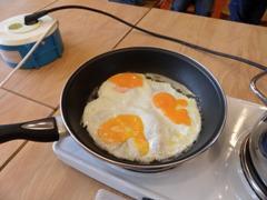 Kleurplaten Dieren Uit Een Ei.Jufjanneke Nl Het Kippenhok
